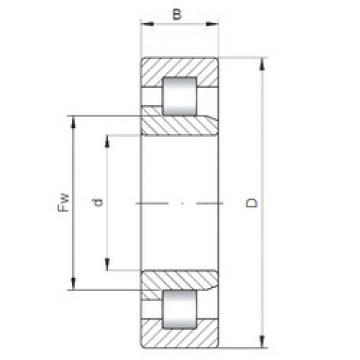 Rodamiento NJ2344 ISO