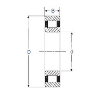 Rodamiento RXLS 8.1/2 SIGMA