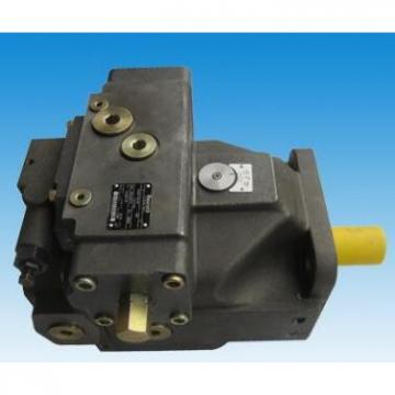 Rexroth AA4VG 125 HD3 D1 /32L-NSF52F001D