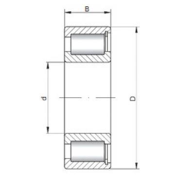 Rodamiento NCF1872 V ISO