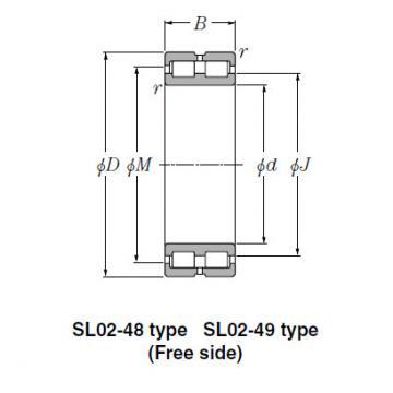 Bearing SL01-4852