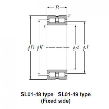Bearing SL02-4838